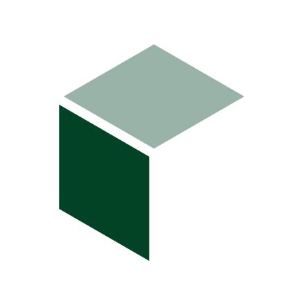 Store It Now logo